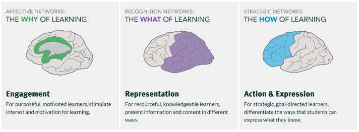Affective networks - the why of learning. Engagement, for purposeful, motivated learners, stimulate interest and motivation for learning. Recognition networks: the what of learning. Representation, for resourcesful, knowledgeable learners, present information and content in different ways. Strategic networks: the how of learning. Action and expression, for strategic, goal-directed learners, differentiate the ways that students can express what they know.