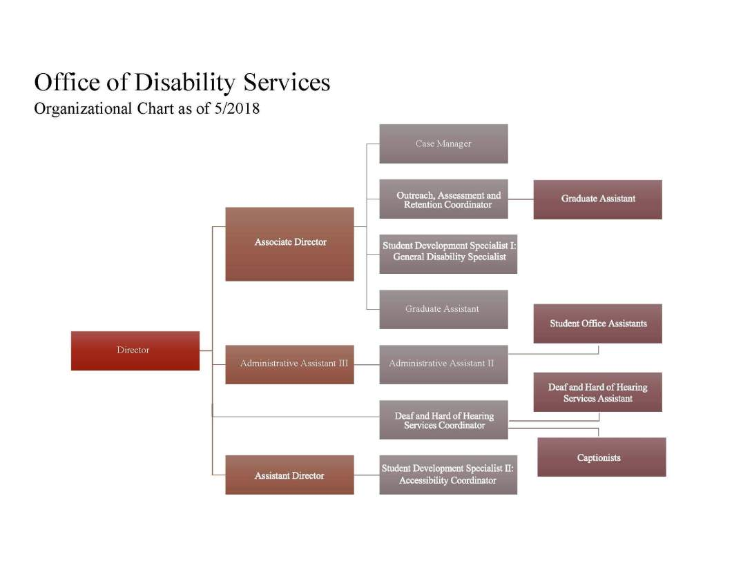 Office of Disability Services Organizational Chart from Texas State